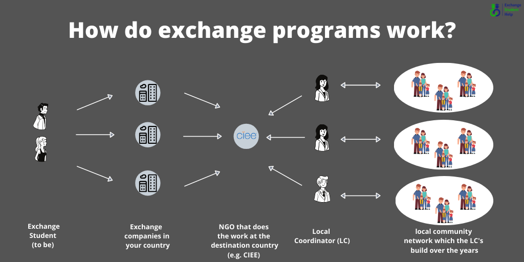 How do exchange programs work?